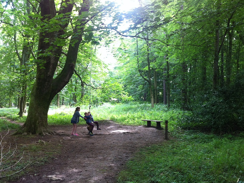Fab new wild play trail